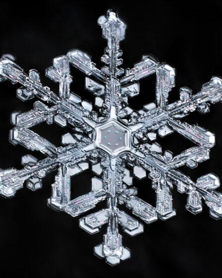 снежинка фото макросъемка